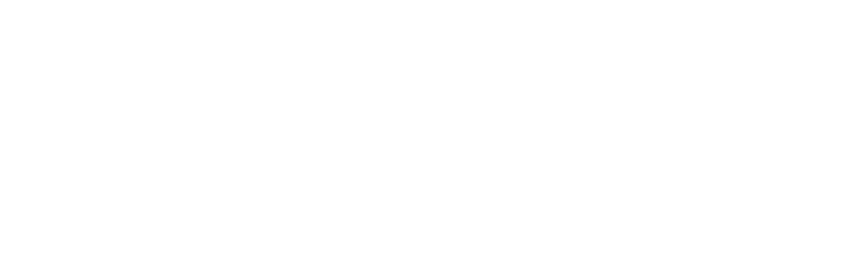 logo lilident white